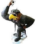 2004 jazz Herky the Hawk