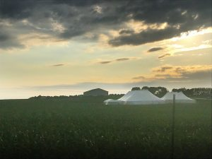 20' x 60' frame tent with a glass door on the left with 80' x 150' rope and pole and 60' x 90' rope and pole tent on the right with two 10' x 10' frame tents connecting them all together