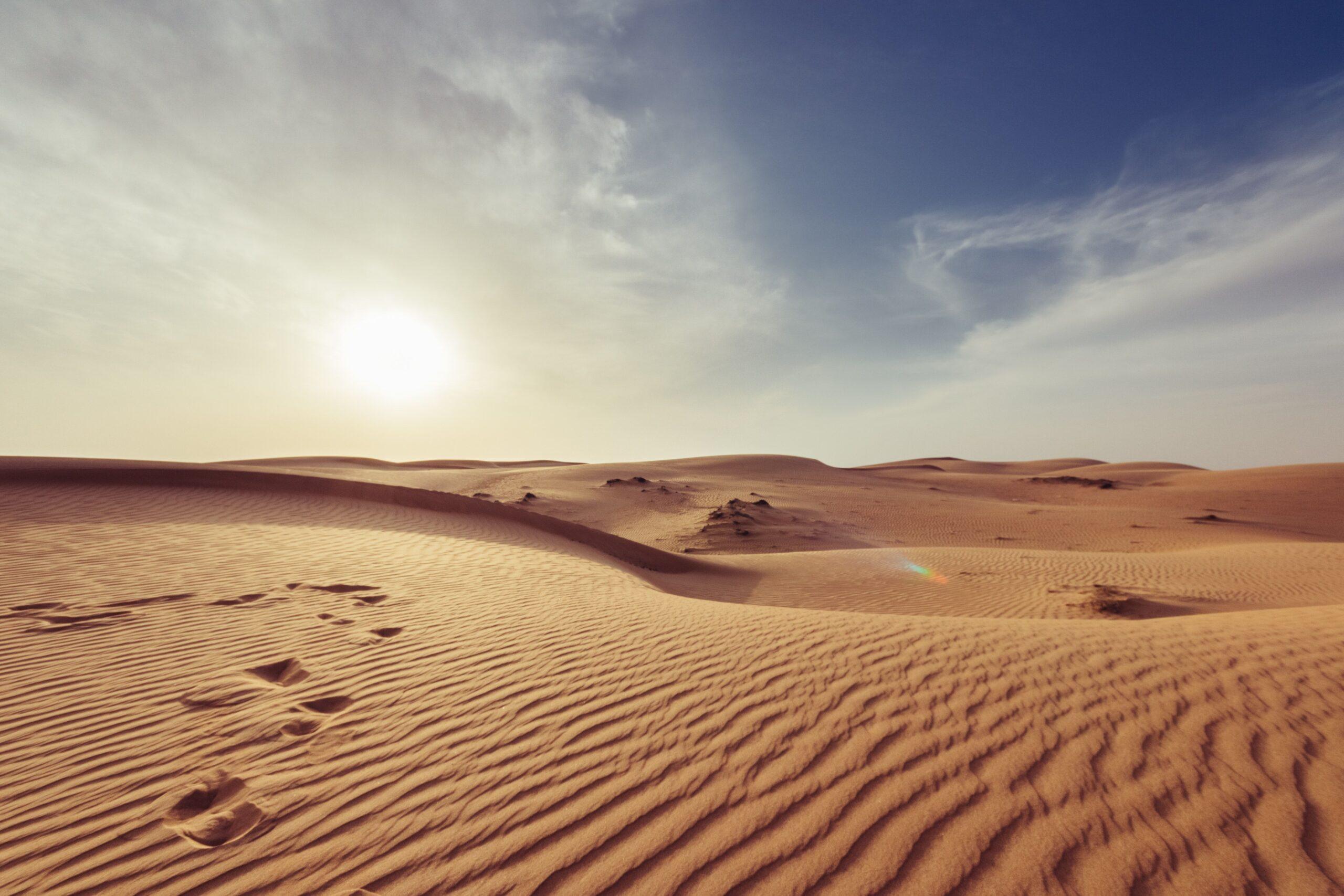 In the Desert with Thomas Merton – Lenten Series
