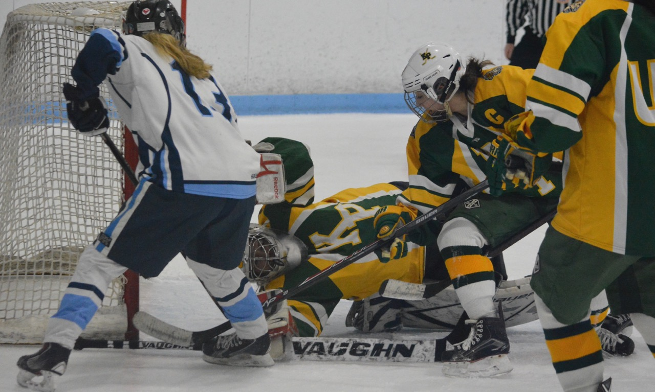 2018-2019 Hockomock Girls Hockey Preview