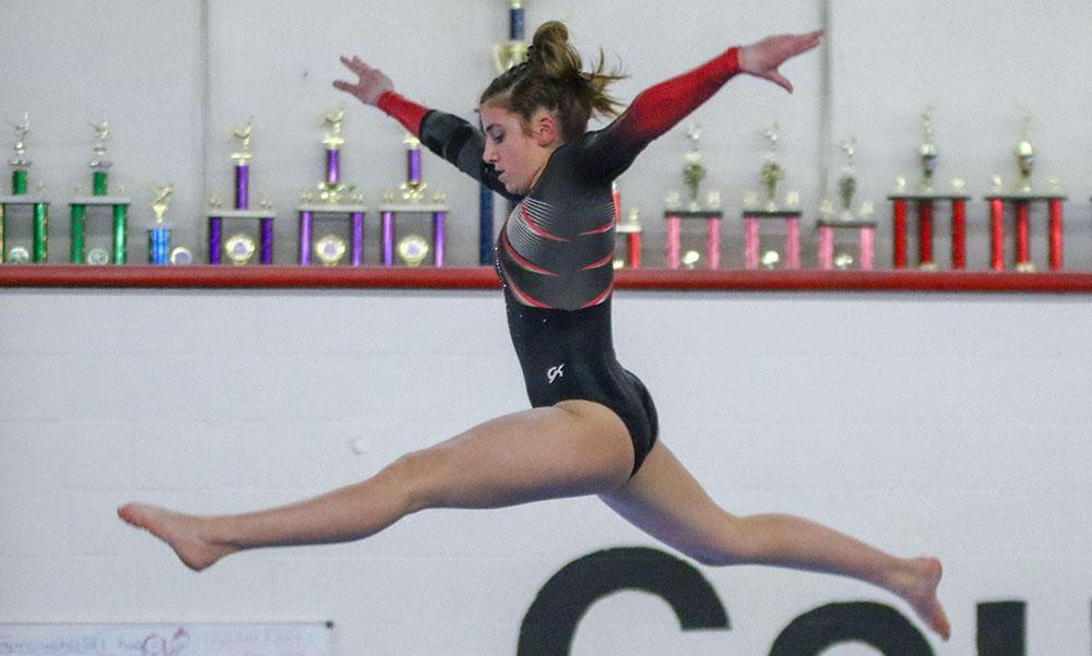 Hockomock gymnastics