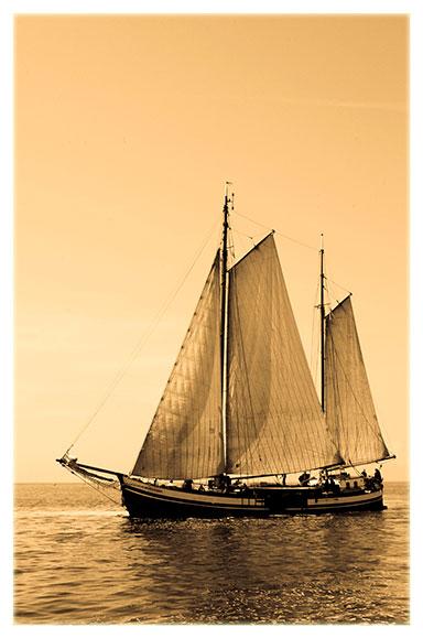 goldtone-ship