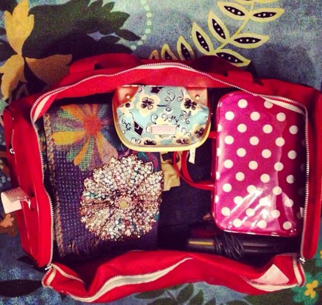 Phoenix suitcase