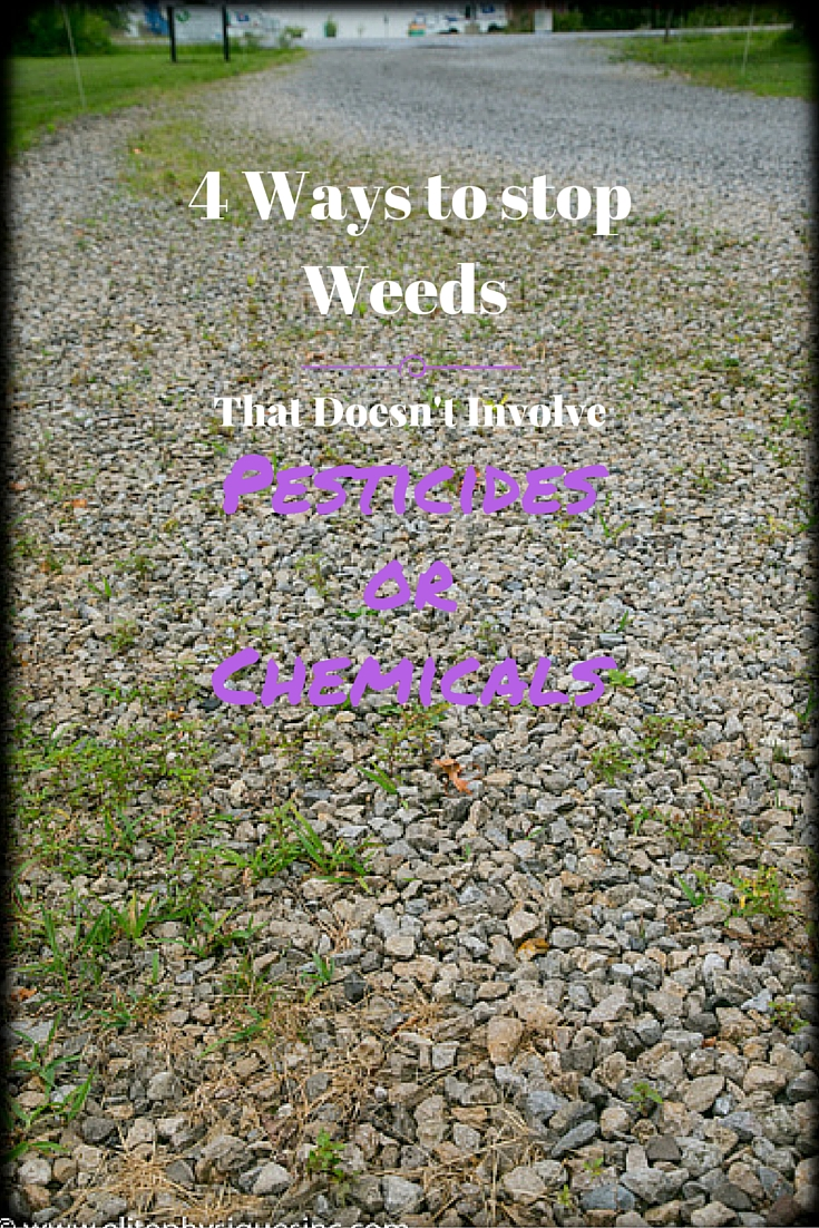 4 Ways to stop Weeds That Doesn't Involve Pesticides or Chemicals