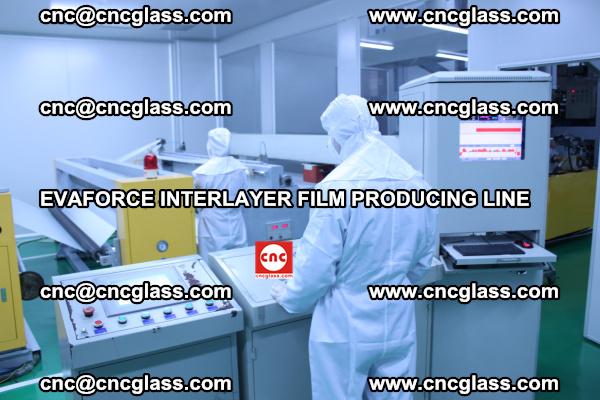 EVAFORCE INTERLAYER FILM SMART PRODUCING LINE PURIFIED (12)