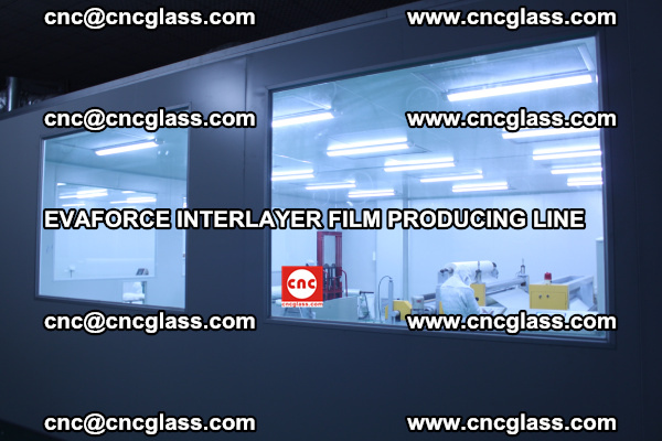 EVAFORCE INTERLAYER FILM SMART PRODUCING LINE PURIFIED (6)
