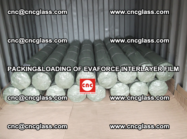 PACKING AND LOADING OF EVAFORCE INTERLAYER FILM (2)
