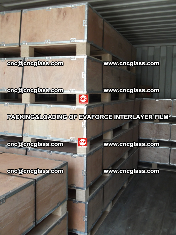 PACKING&LOADING OF EVAFORCE INTERLAYER FILM for safety laminated glass (19)