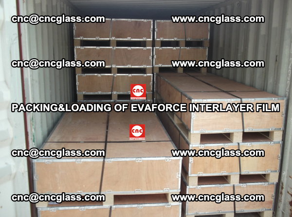 PACKING&LOADING OF EVAFORCE INTERLAYER FILM for safety laminated glass (21)