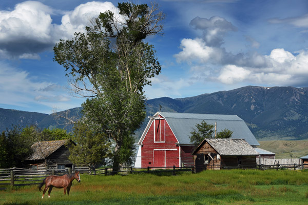 Madison Valley Horse Ranch in Jeffers, Montana