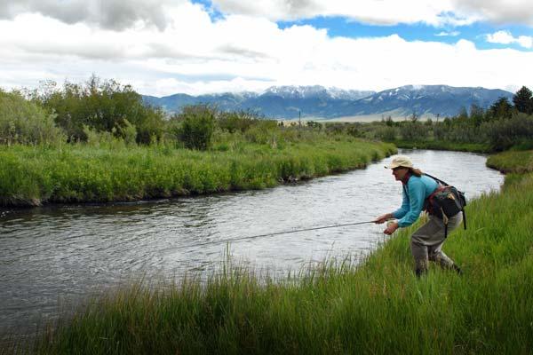 O'Dell Spring Creek in Ennis, Montana