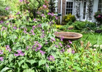 garden tour birdbath