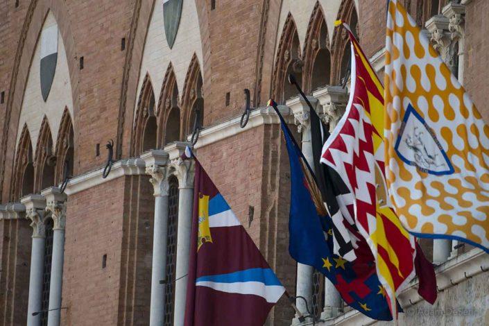 Contrada Flags, Palio, Siena, Italy
