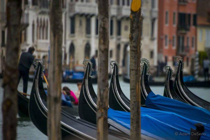 Gondola Line, Venice