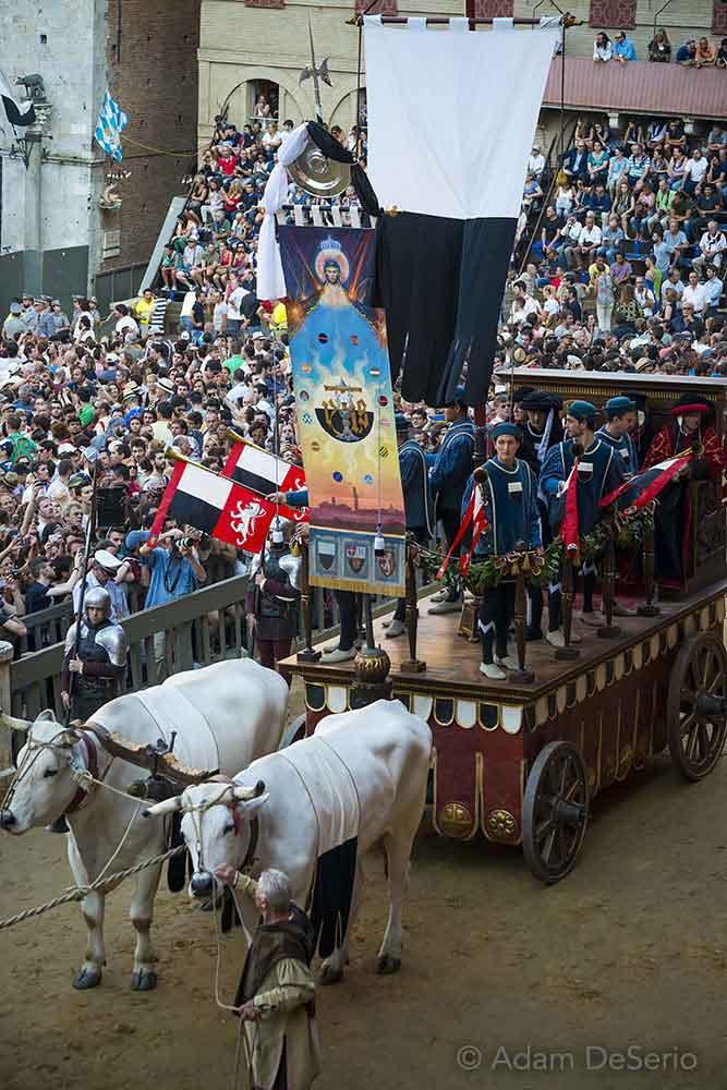 The Palio Wagon, Palio, Siena, Italy
