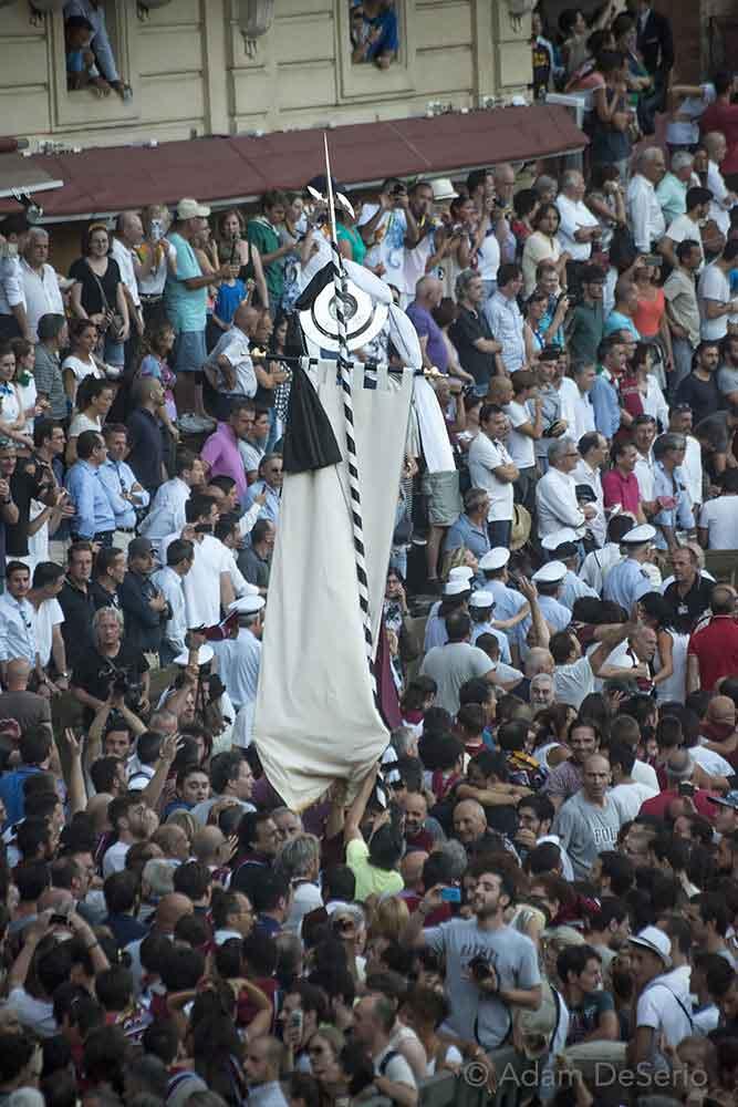 The Winning Palio, Palio, Siena, Italy