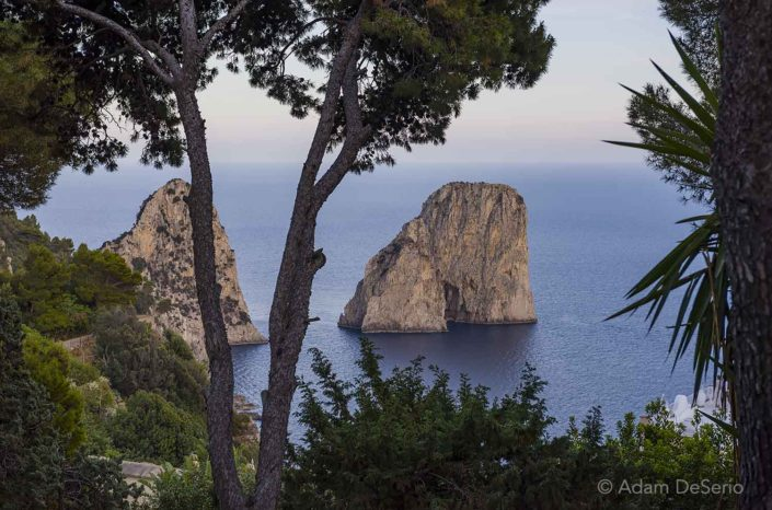 Capri Island Towers