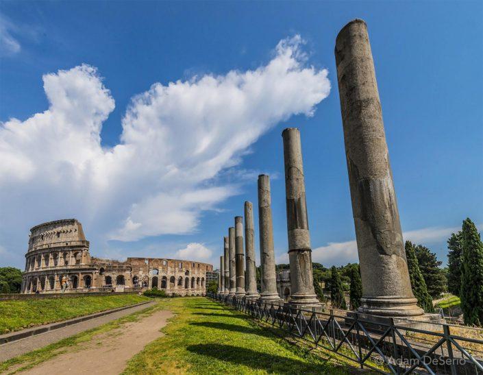 The Colosseum Garden, Rome, Italy
