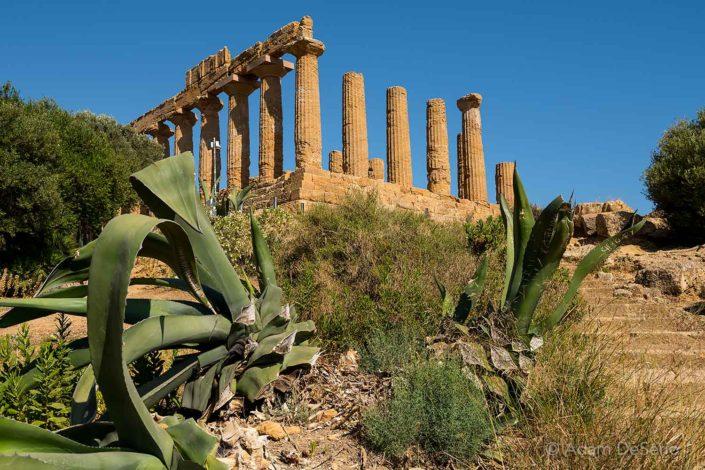 Agrigento Ruins