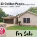 23 Golden Poppy