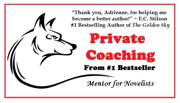 how to write novels, book coaching