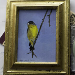 Gold Finch, Acrylic on Canvas, K Cook painting