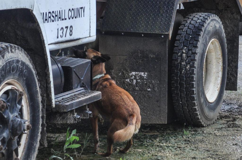 Sadie Truck