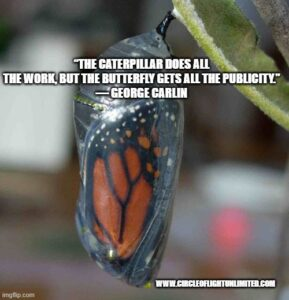 """Image of butterfly in transparent chrysalis with the quote """"The caterpillar does all the work, but the butterfly gets all the publicity."""" - George Carlin"""
