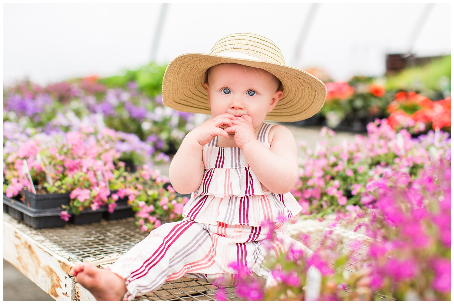 Baby Ivy sitting among florals in a greenhouse wearing a fun floppy hat.