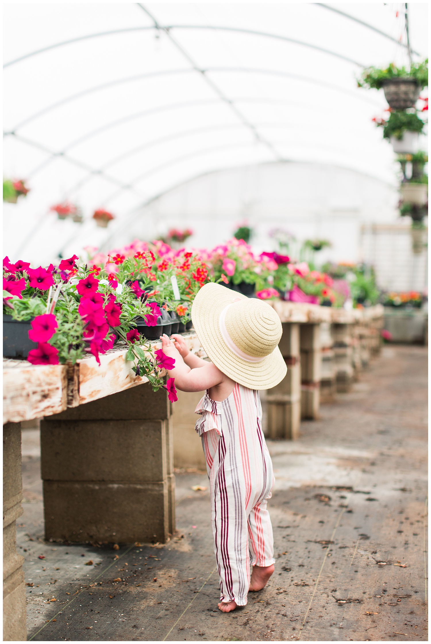 Baby Ivy standing along side florals in a greenhouse wearing a fun floppy hat.