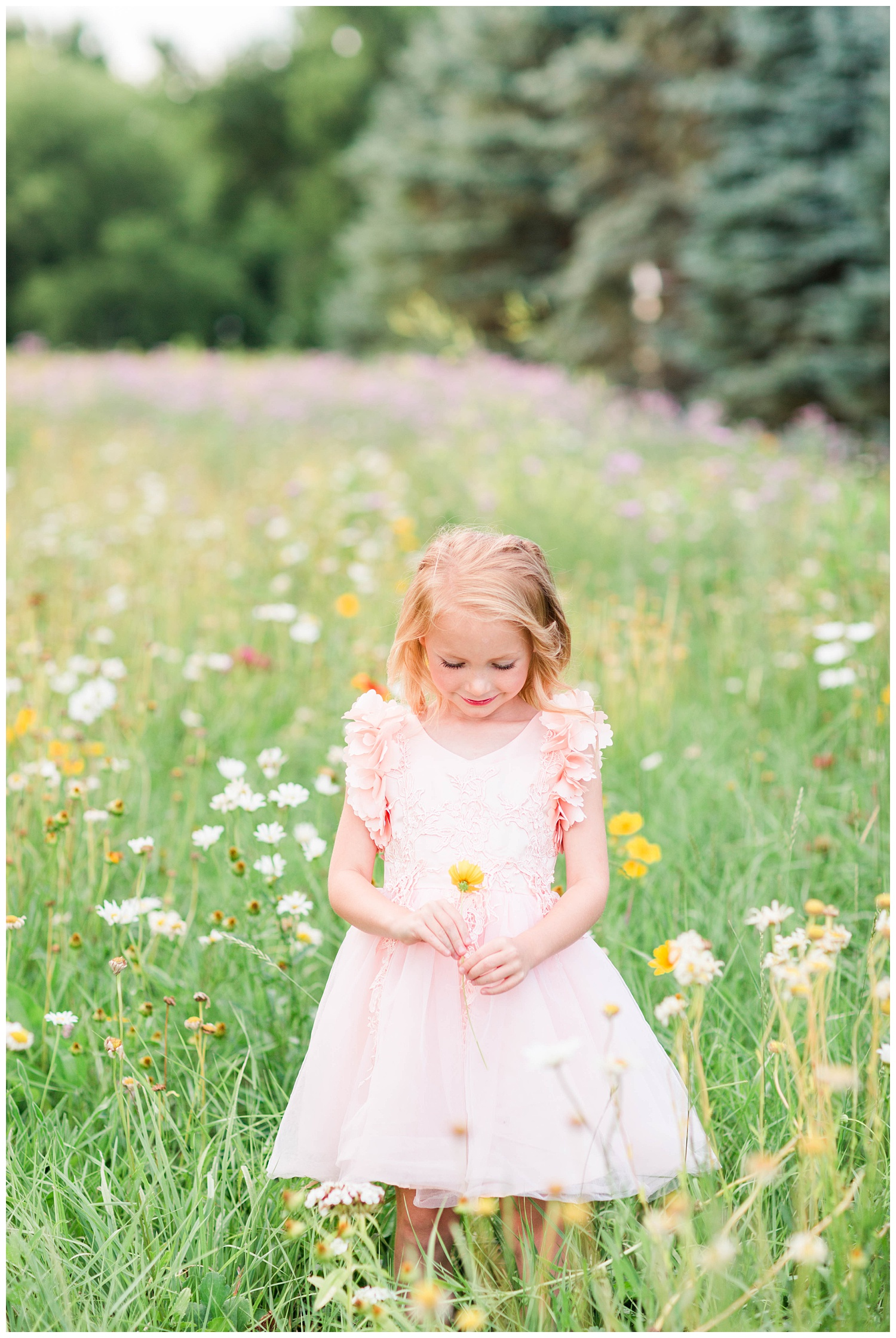 Little Liella stands in a field of wild flowers holding a yellow flower wearing tutu du monde couture dress by Trish Scully   CB Studio