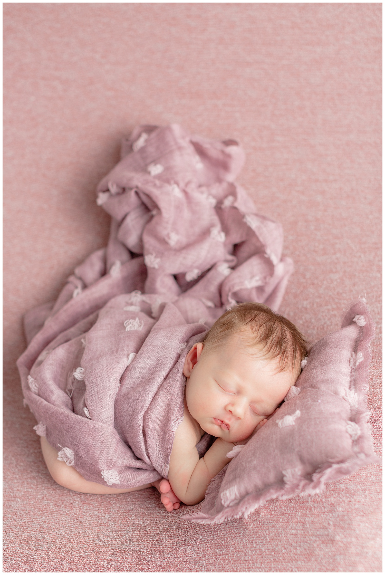 Newborn baby girl posed on mauve colored stretch fabric snuggled in a taco pose with a textured pillow and wrap.   CB Studio