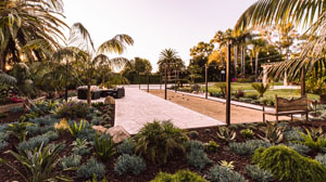 Succulents and Seating Areas Around Bocce Court