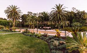 Drought Tolerant Succulent Design Santa Barbara
