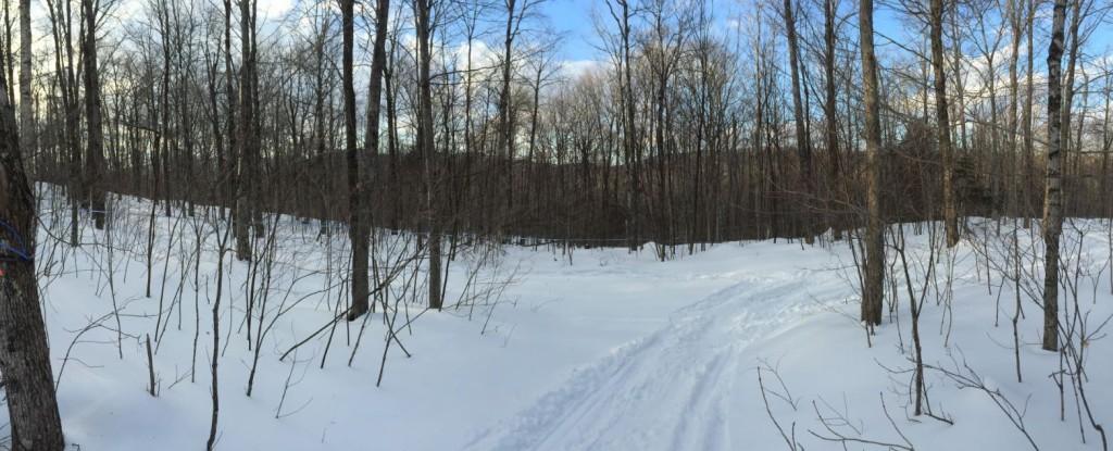 WestHill is part of the Sutton mountain range which is part of the larger Green Mountains of Vermont. La colline Westhill fait parti des monts Sutton qui sont eux même une extension des Montagnes Vertes du Vermont.