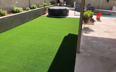 Caring for synthetic grass during summer months in Arizona: Keeping it cool and easy