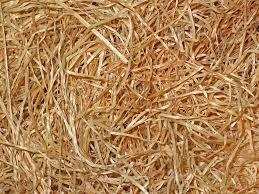 wood fibers lockout repeat