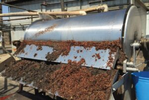 raisin factory fatality California