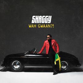 Shaggy_wahGwaan