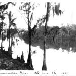Suwannee River, Old Time Florida