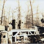 Co. 3776-C Building Wood Duck Houses