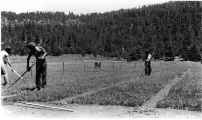 Co. 863 F-75-A, Pine, AZ, Camp Pivot Rock