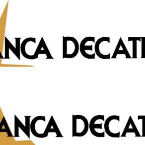 Bellanca Decathlon Logo Decal PAIR (2)
