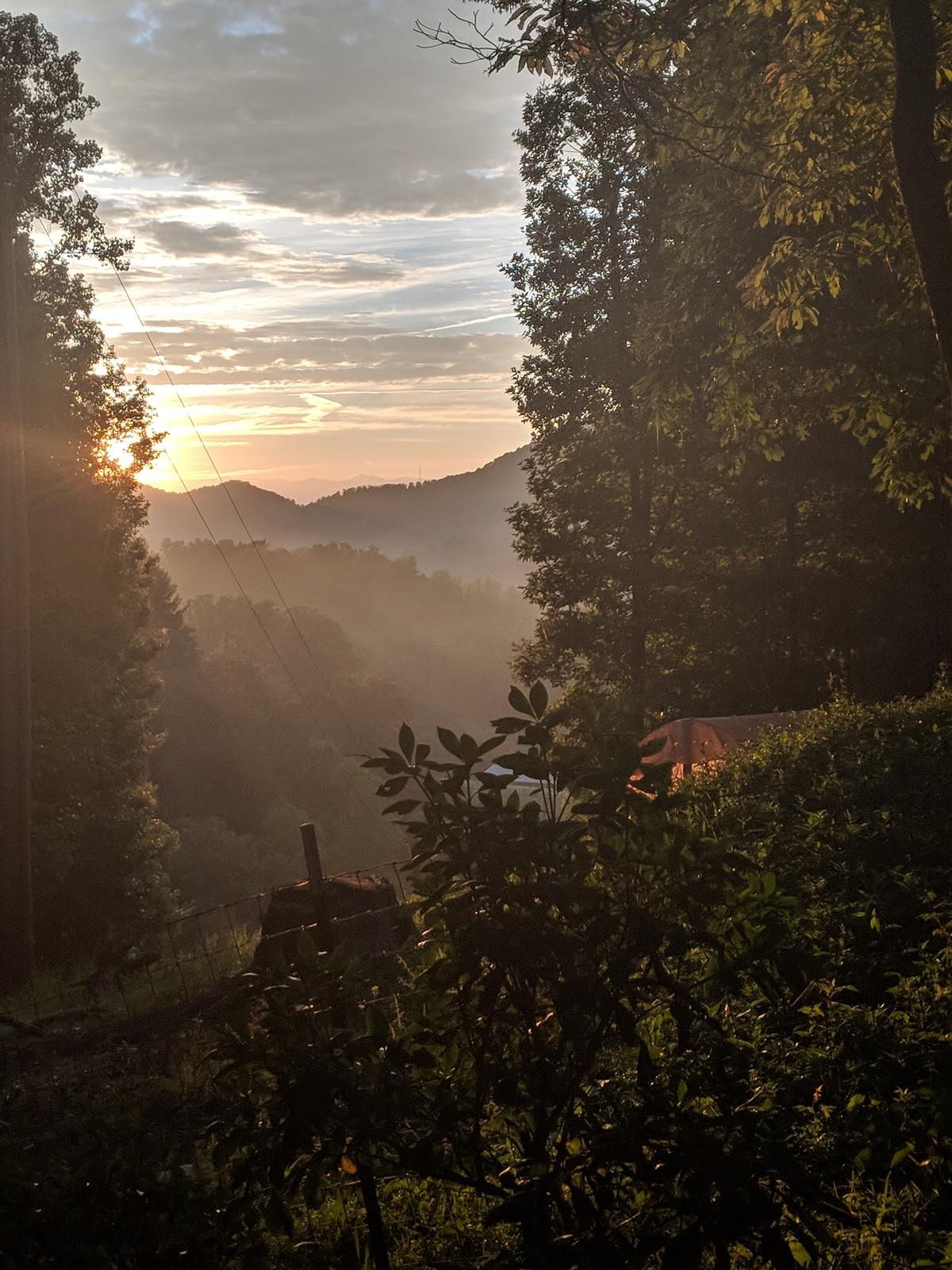 Golden sunlight photography Asheville