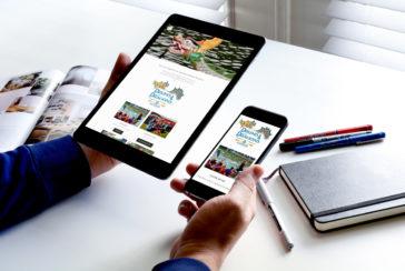 Asheville Website Design for Non-profit