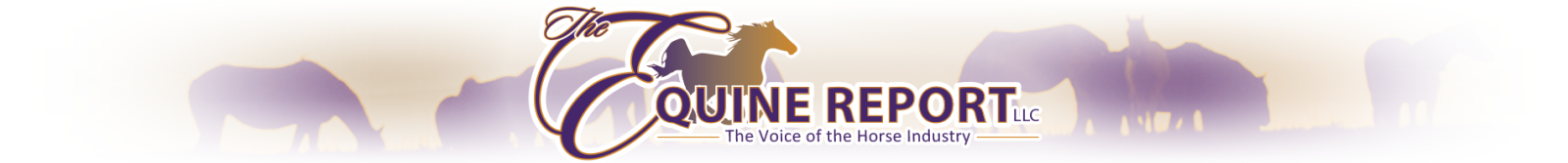 The Equine Report