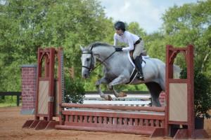Horse Jump pic