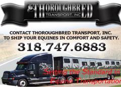 Thoroughbred Transdport