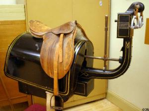 coolidge's horse Jim Steinhart