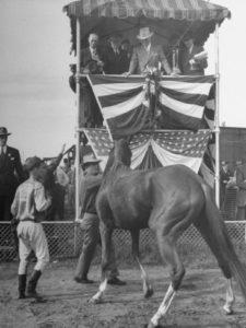 truman admiring a horse at 1945 Missouri Fair